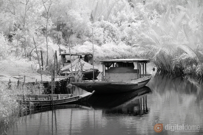 Black & White Infrared : 06