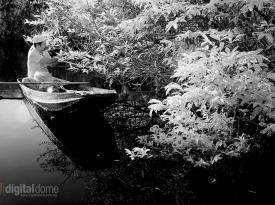 Black & White Infrared : 14