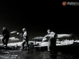 Black & White Infrared : 08