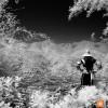 Black & White Infrared : 19