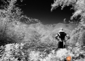 Black & White Infrared : 09