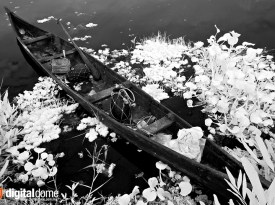 Vaikom Backwater – 01