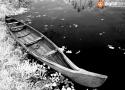 Vaikom Backwater – 03