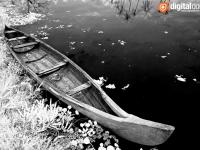 Vaikom Backwater – 02