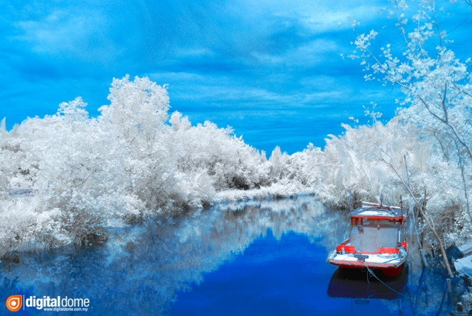 Color Infrared – 06