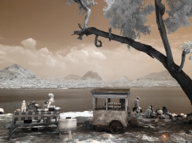 Color Infrared – 11