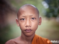 Portrait of Novice Monk